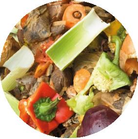 Organisch afval