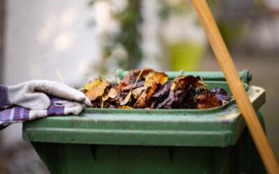 Afval per seizoen. Zo hou je je container schoon